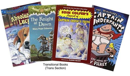 Transitional Books
